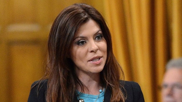Conservative MP Eve Adams admitted on Twitter late Tuesday that she had been fined by Parliament Hill security officers for driving through a security checkpoint 'without coming to a complete stop.' Media reports said she was ticketed for talking on her cellphone.