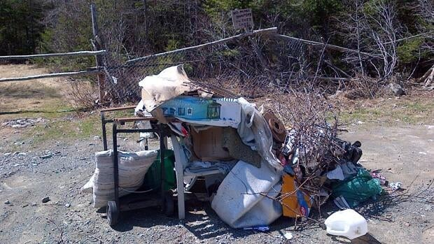 Illegal dumping was found in the Paddy's Pond area last month.