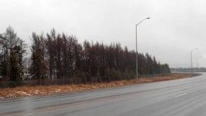 li-tamaracks-expressway-620