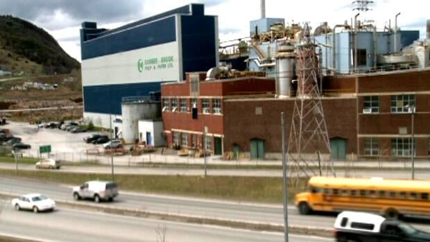 An employee at Corner Brook Pulp and Paper in Newfoundland and Labrador lost her job after putting an angry post about her supervisors on Facebook.