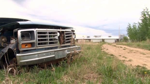 """The Town of Hay River, N.W.T., has reacquired the former site of """"Northern Pork"""" – a failed attempt at pig farming in the late 1990s. It plans to set aside the land for agricultural use."""