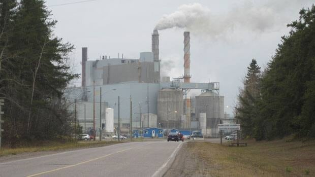 Terrace Bay Pulp owes about $42 million to creditors.