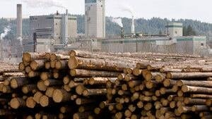 hi-bc-110717-lumber-852-cp-9556196-4col