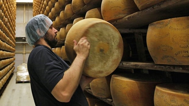 An employee stacks a wheel of cheese on the storage shelves at a dairy factory. Quebec dairy firm Saputo Inc. has bought a U.S. rival for almost $1.5 billion.