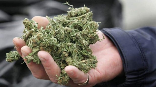 Producers of homegrown marijuana will be abolished under the new system and replaced with industrial facilities overseen by the RCMP and federal health inspectors.