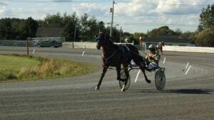 hi-nb-horse-racing-exhibition-852