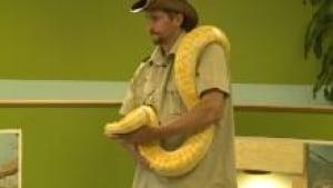ns-macdonald-snake_220x124_1