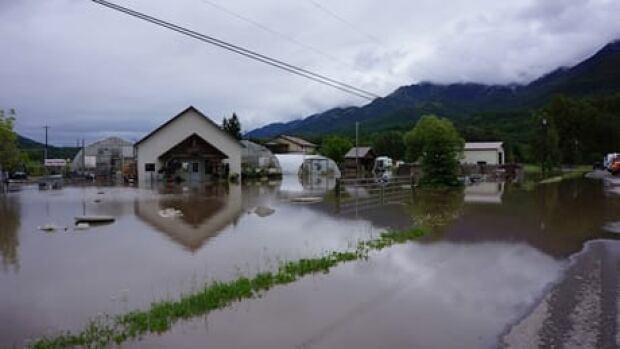 fi-bc-130621-fernie-flooding-1