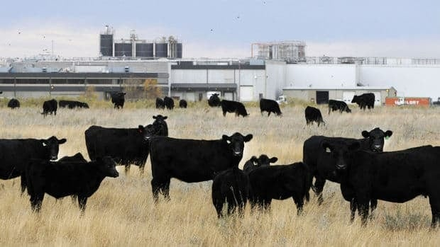 Community leaders were allowed into the former XL Foods meat plant in Brooks, Alta., which closed last fall during the largest meat recall in Canadian history.