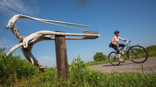 On a bicycle, you see everything up close – including the darndest mailboxes.