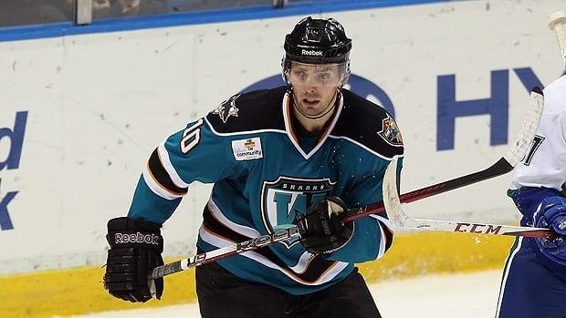 Frazer McLaren, seen playing in the AHL this season, has played 40 regular season NHL games.