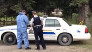 si-calgary-bylaw-charges