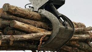 hi-lumber-8col