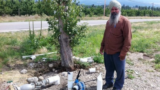 Orchardist Kewal Singh Mann says vandals have hit his East Kelowna orchard three times this summer, smashing his fruit stand and destroying his new $15,000 irrigation system.