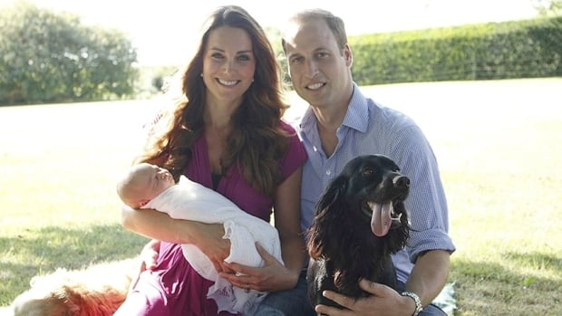 William and Kate with Prince George and Lupo, their cocker spaniel, photographed in the garden of the Middleton family home.
