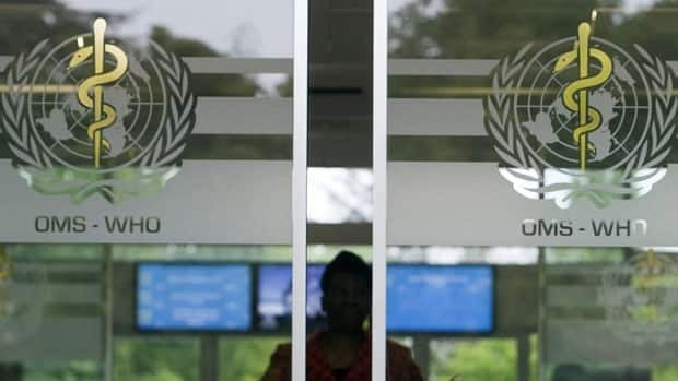 A person is seen approaching the main entrance of the World Health Organization headquarters in Geneva, Switzerland, Monday, April 27, 2009.