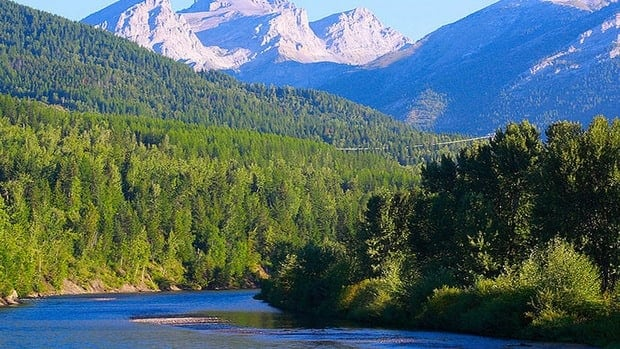 The Elk Valley is considered a wildlife corridor and a hotspot for biodiversity.