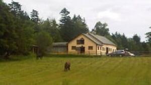 nb-dennis-oland-home