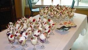 hi-hospital-trifle-4col