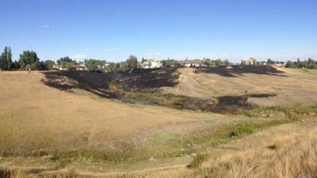Emergency crews battled a grass fire that threatened homes in Swift Current Friday.