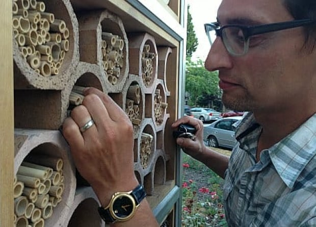 mi-bc-130808-insect-hotel-hartley-rosen