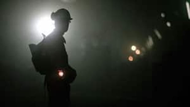 The operators of the Murray River Coal Mine near Tumbler Ridge say there were unable to find qualified miners in Canada.