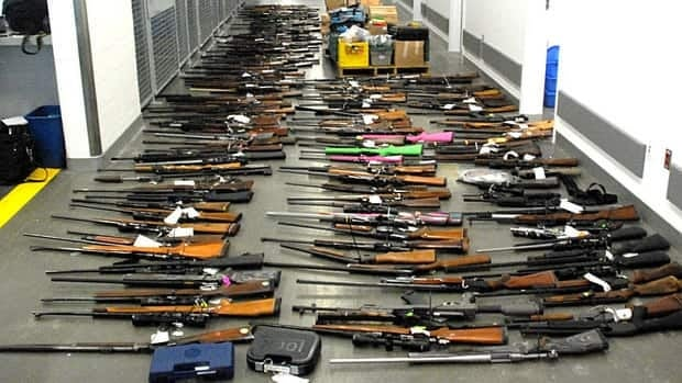 Police in B.C. say they seized 183 firearms and tens of thousands of rounds of ammunation from a Tatla Lake man.