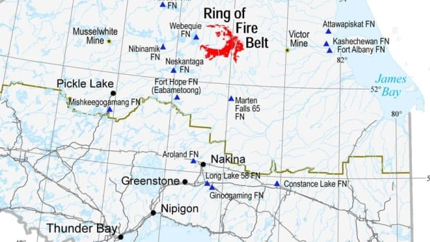The Ring of Fire mineral deposit in Ontario's James Bay Lowlands is rich in chromite and nickel but short on roads and power lines.