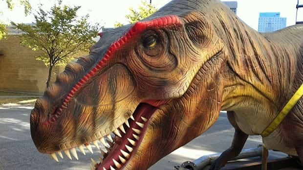 A life-sized model of a juvenile T-rex is unloaded at the Manitoba Museum for the launch of the Dinosaurs Unearthed exhibit.