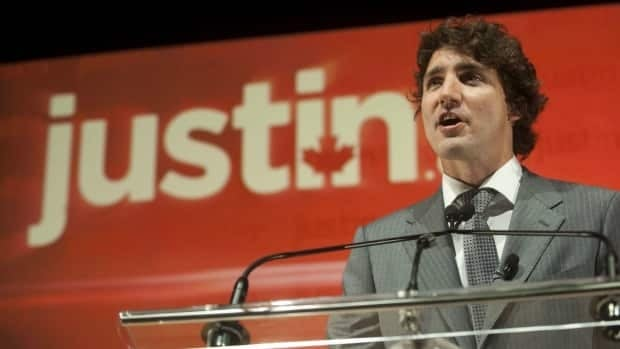Liberal MP Justin Trudeau is seen here announcing he will seek the leadership of the party.