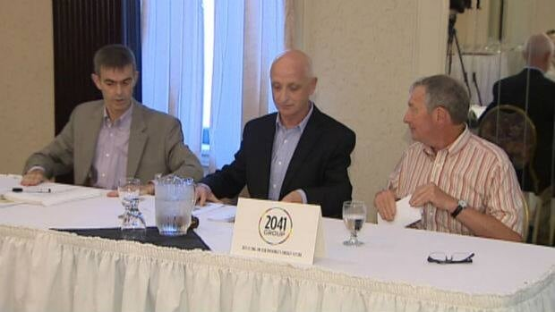 The 2041 Group says the decision from Nova Scotia leaves too much uncertainty, and that Emera could back out of the Maritime Link deal.