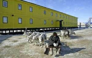 si-300-russia-reindeer-herder-1144149