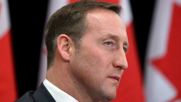Defence Minister Peter MacKay says the Conservative government is examining whether to dispatch Canadian troops to help train an African force whose purpose would be to take back a vast swath of Mali from an off-shoot of al-Qaeda.