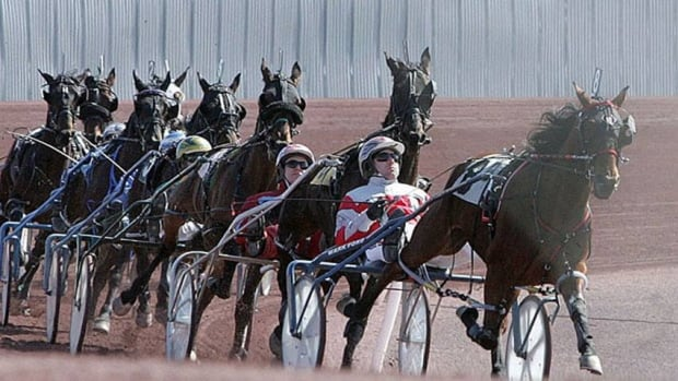 Harness racers in Sudbury are waiting to hear whether there will be enough racing this year to sustain them.
