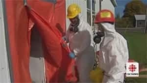 pe-asbestos-removal-300
