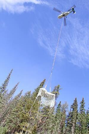 mi-bc-130828-hadrosaur-airlift-tumbler-ridge-mccrea