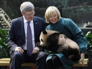 The prime minister and the panda