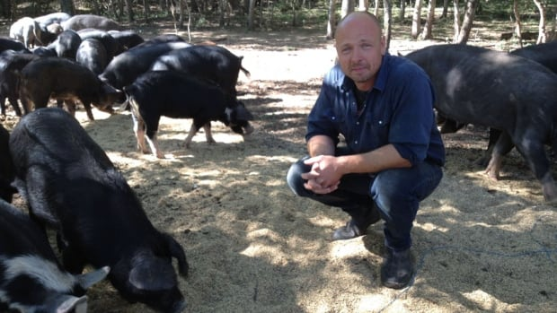 Clinton Cavers with his pigs at Harborside Farms, a family free-range farm near Pilot Mound, Man.