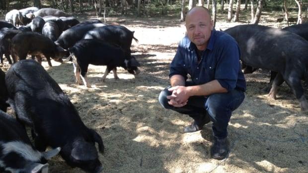 "Clinton Cavers with his ""happy pigs"" raised on the family's free-range farm near Pilot Mound, Man."