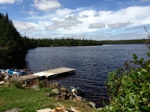 Body of 2-year-old boy was found in this pond near Featherbed campground, off Witless Bay Line