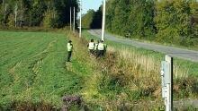 Amy Paul grid search police field