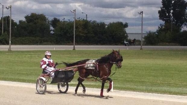 There are three more races scheduled for the Leamington Fairgrounds.