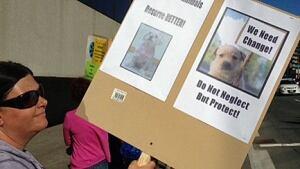 Animal shelter protest, Sudbury