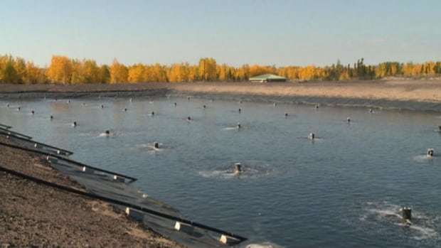 The new sewage treatment facility in Happy Valley-Goose Bay includes three lagoons that retain wastewater for treatment.