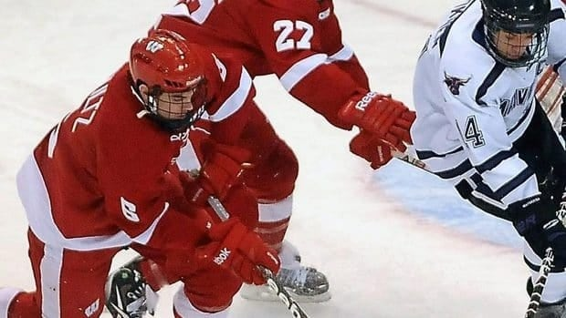 Defenceman Justin Schultz, left, seen here skating for the University of Wisconsin, could fill a top-four role on an NHL blue-line next season, according to many hockey observers.
