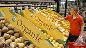 si-organic-fruit-220-cp-321