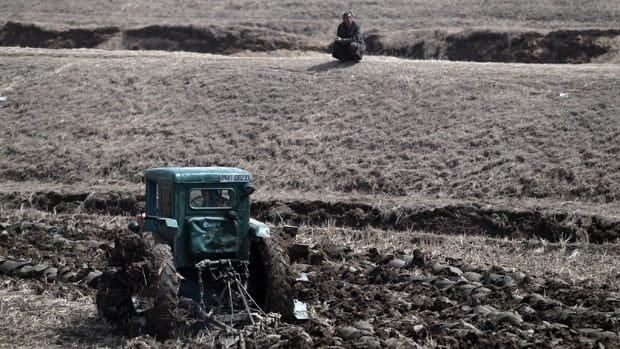 A North Korean man watches a farmer using a tractor to plow a field on the outskirts of Pyongyang, North Korea in this April 2012 photo.