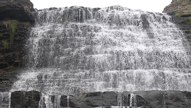 Firefighters have performed at least five rope rescues at Albion Falls this summer.