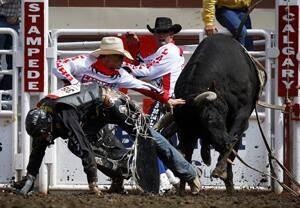 si-300-calg-stampede-bullfighters