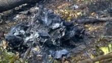 mi-ott-crash-wreckage-300